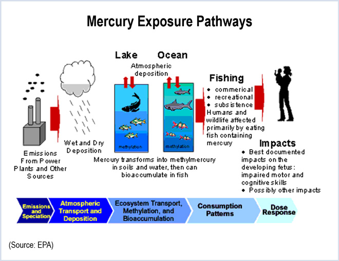 regulatory analysis mercury and air toxics April 2013 rff dp 13-10 mercury and air mercury and air toxics standards analysis deconstructed: epa regulation are expected to have a much larger effect on.