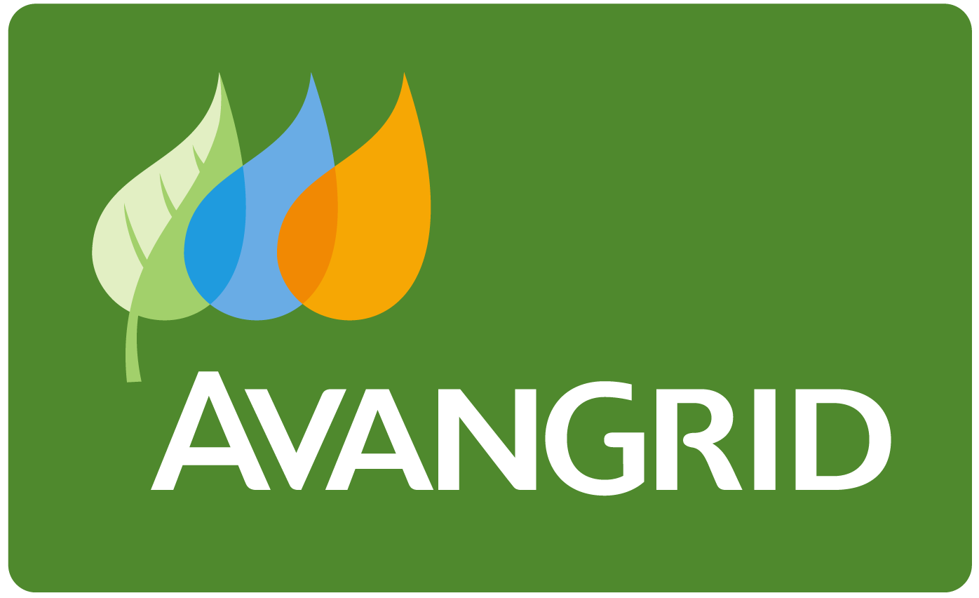 Avangrid Posts Profit in First Earnings Results | RTO Insider